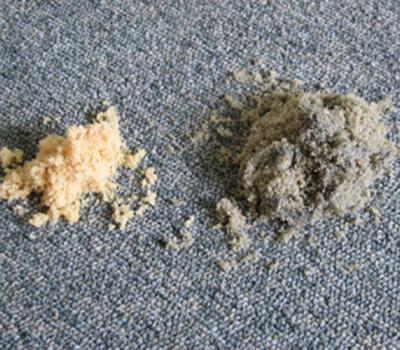 Teppich Grundreinigng